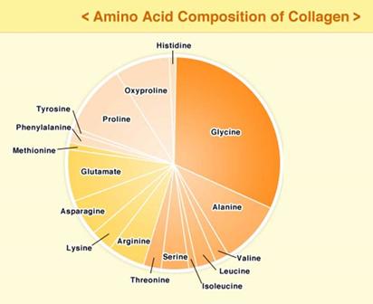 Gráfico aminoácidos colágeno